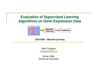 Evaluation of Supervised Learning Algorithms on Gene Expression Data CSCI 6505 – Machine Learning