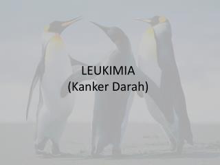 LEUKIMIA ( Kanker Darah )
