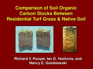 Comparison of Soil Organic  Carbon Stocks Between  Residential Turf Grass & Native Soil