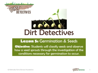 Seed Detectives