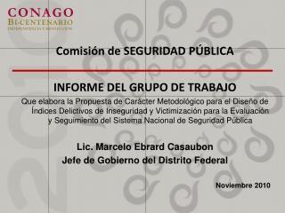 Comisión de SEGURIDAD PÚBLICA INFORME DEL GRUPO DE TRABAJO