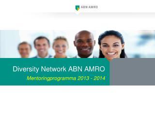 Diversity Network ABN  AMRO Mentoringprogramma 2013 - 2014