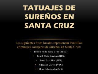 TATUAJES DE  SURE�OS  EN  SANTA  CRUZ