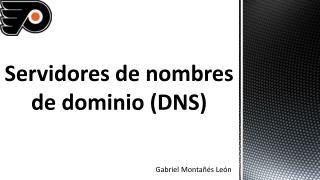 Servidores de nombres de dominio (DNS)