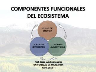 COMPONENTES FUNCIONALES DEL ECOSISTEMA