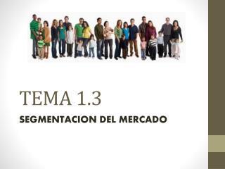 TEMA  1.3