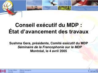Conseil exécutif du MDP : État d'avancement des travaux