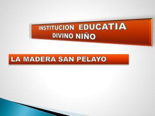 INSTITUCION  EDUCATIA DIVINO NIÑO
