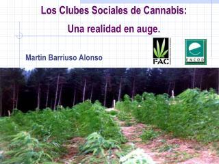 Los Clubes Sociales de Cannabis:  Una realidad en auge.