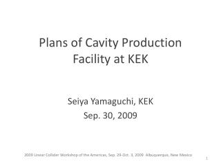 Plans of Cavity Production Facility at KEK