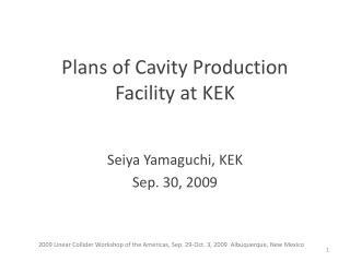 Plans of Cavity Production Facility at KEK