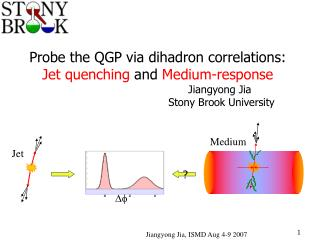 Probe the QGP via dihadron correlations:  Jet quenching  and  Medium-response