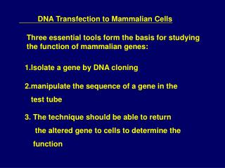 DNA Transfection to Mammalian Cells