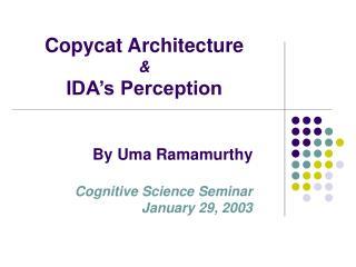 Copycat Architecture  &  IDA's Perception