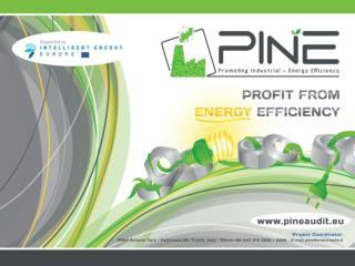 ●  Despre proiect Scopul principal al proiectului PINE este  influientarea cresterii  eficientei