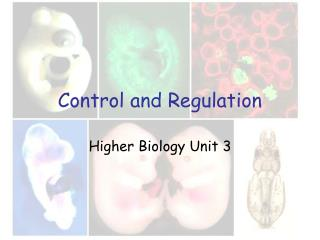 Control and Regulation