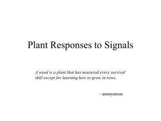 Plant Responses to Signals