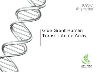 Glue Grant Human  Transcriptome  Array