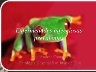 Enfermedades infecciosas prevalentes