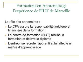 Formations en Apprentissage l'expérience de l'IUT de Marseille