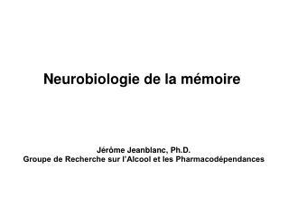 Neurobiologie de la m�moire