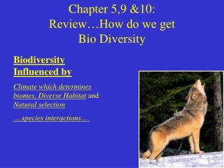 Chapter 5,9 10:  Review How do we get  Bio Diversity