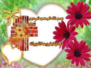 الأدلة على طلب العلم من كتاب الله وسنة رسوله محمد صلى الله عليه وسلم :