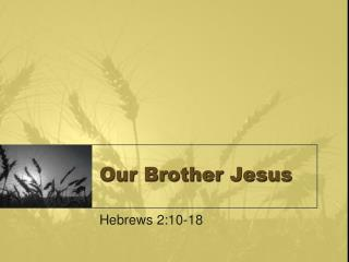 Our Brother Jesus