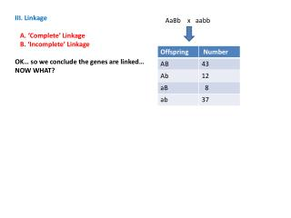 III. Linkage    A. 'Complete' Linkage    B. 'Incomplete' Linkage
