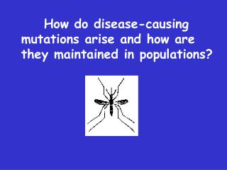 How do disease-causing mutations arise and how are they maintained in populations?