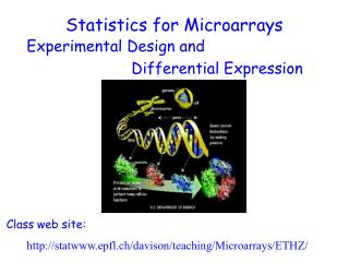 Experimental Design and    Differential Expression