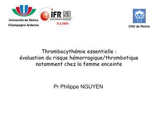 Pr Philippe NGUYEN