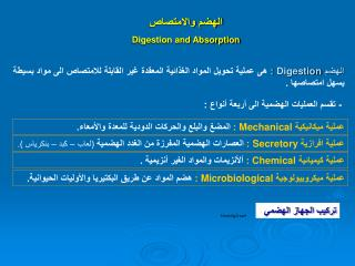 الهضم والامتصاص  Digestion and Absorption