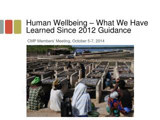 Human Wellbeing – What We Have Learned Since 2012 Guidance