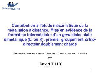 Présentée dans le cadre de l'obtention d'un doctorat en chimie fine par David TILLY