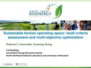 Sustainable biofuel operating space: multi-criteria assessment and multi-objective optimization