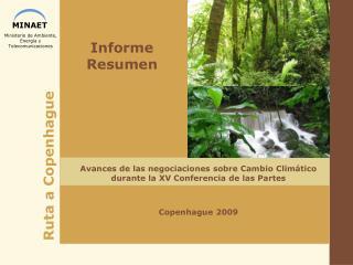 Informe Resumen