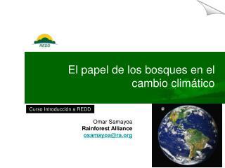 E l papel de los bosques  en  el cambio climático