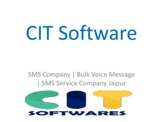 CIT Softwares Offer Low Cost Bulk SMS Service
