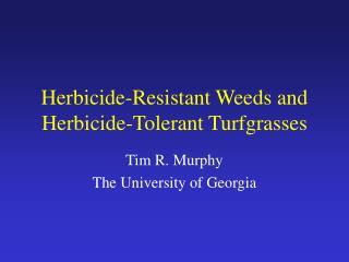 Herbicide-Resistant Weeds and Herbicide-Tolerant Turfgrasses