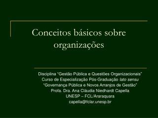 Conceitos básicos sobre organizações