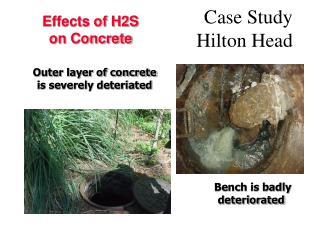 Case Study         Hilton Head