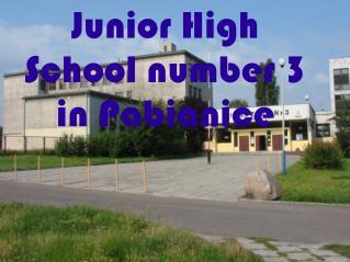 Junior High School number 3 in Pabianice