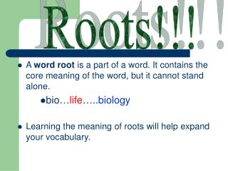 Roots!!!