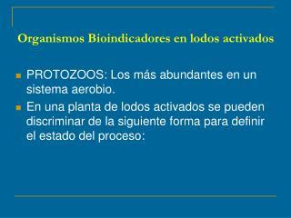 Organismos Bioindicadores en lodos activados