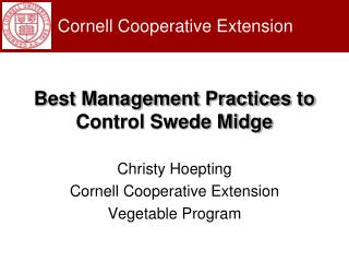 Best Management Practices to Control Swede Midge