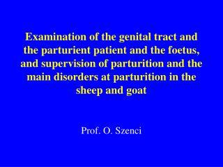Prof. O. Szenci
