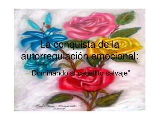 La conquista de la autorregulación emocional: