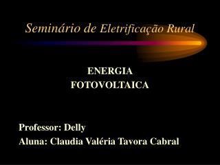 Seminário de  Eletrificação Rural