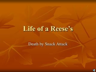 Life of a Reese's